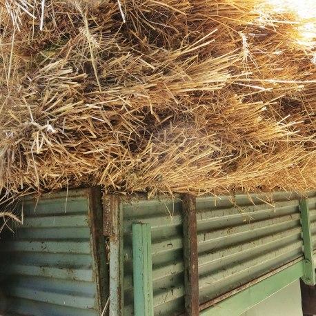 Hay-Truck3