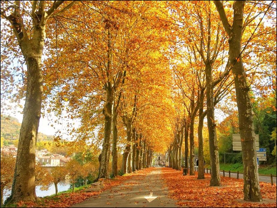 Golden October
