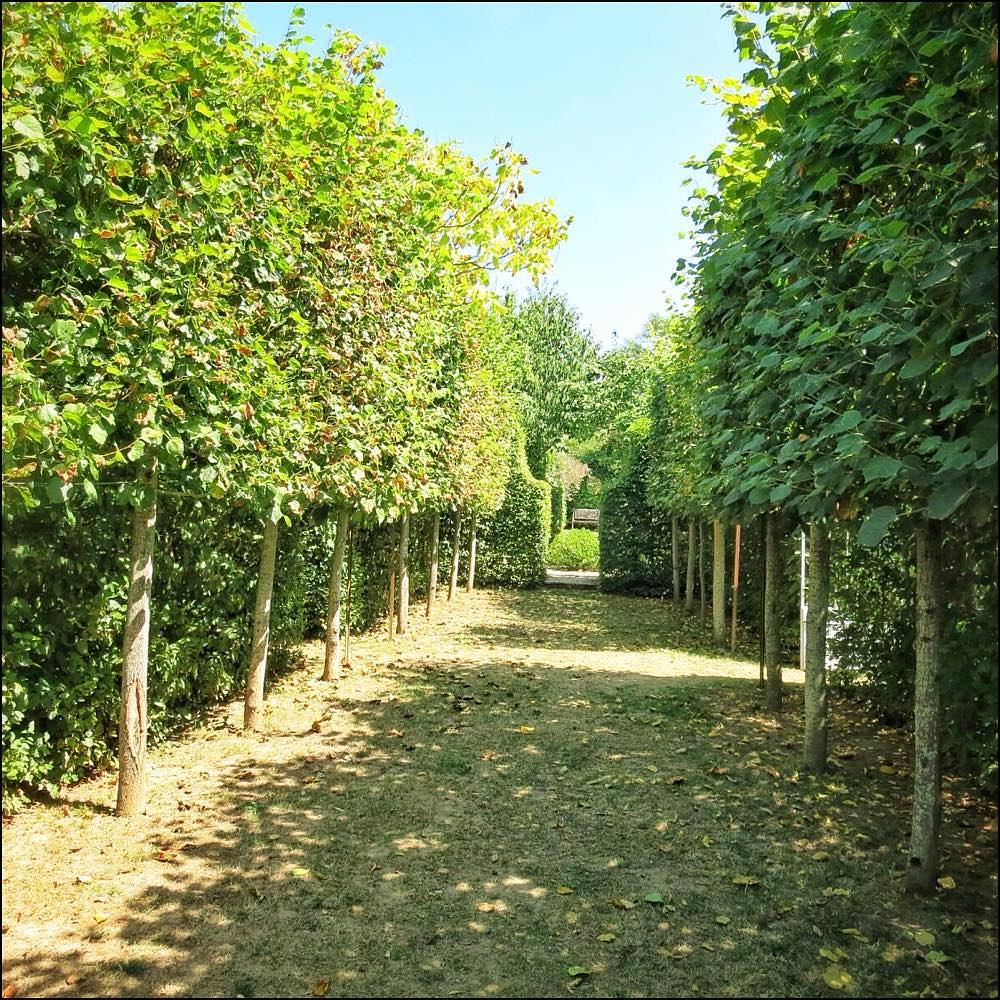 Le Jardin De La Mothe 12260 Aveyron France Chez Mackenzie